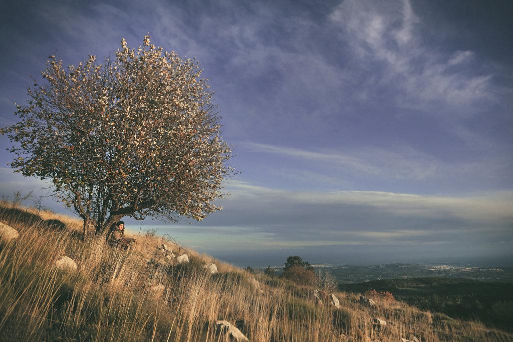 Plateau de la Malle